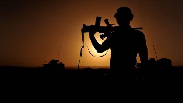 В МИД РФ назвали восстановление мира в Афганистане приоритетом ШОС