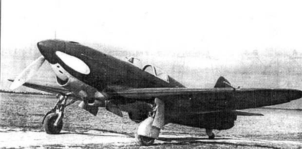 yak1-8.jpg