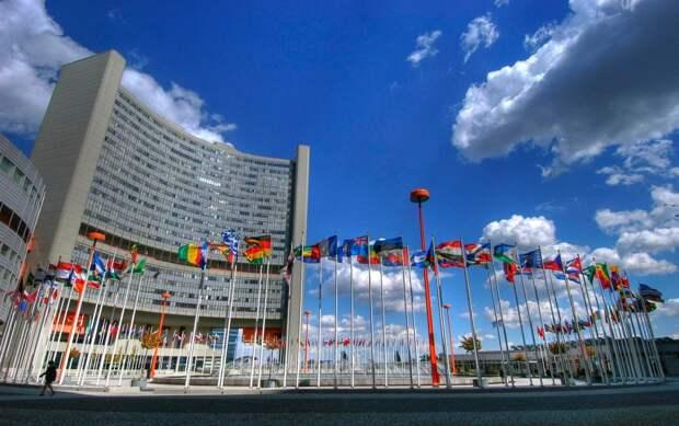 Российский эксперт: ООН вместо того, чтобы защищать правых, отстаивает интересы определенных стран