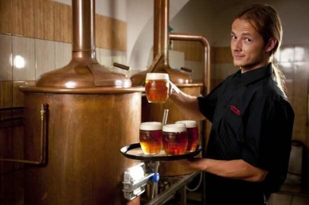 Любое пиво - продукт брожения. |Фото: svadba1000.ru.