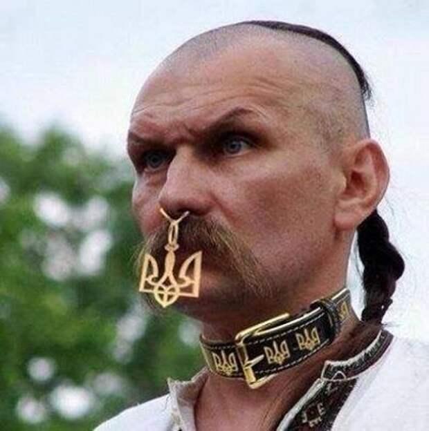 Украинцев разделят на «правильных» и «неправильных»: «Социальный рейтинг» и «бонусы лояльности»
