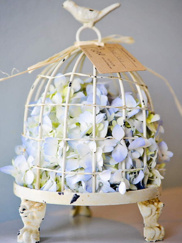 flowers-in-bird-cages-ideas1-3-6 (450x600, 211Kb)