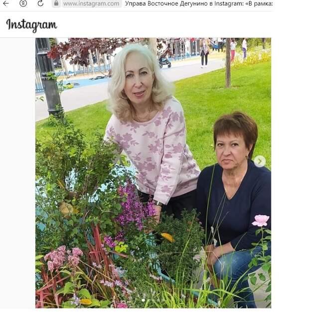Садоводы из Восточного Дегунина заняли третье место на конкурсе цветников