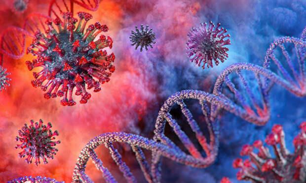 Исследование биологов показало способность коронавируса накапливать мутации