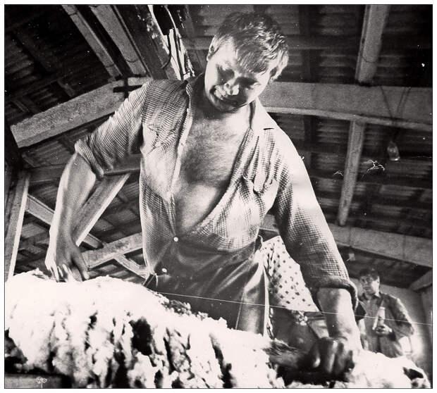 «Битва за урожай»: восьмидесятые