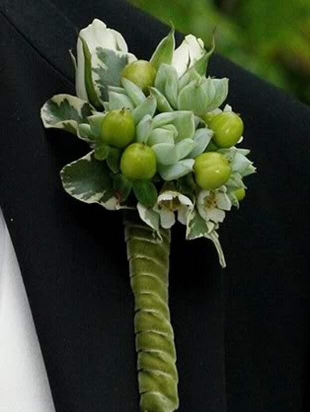 succulent 1 (314x418, 22Kb)