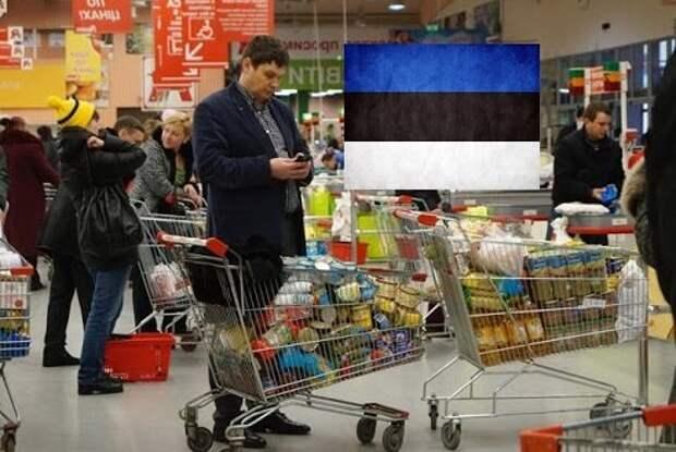 Эстонцы уже так бедно живут в Европе, что вынуждены приезжать в Россию и вывозить целые телеги дешевых продуктов. Что они берут