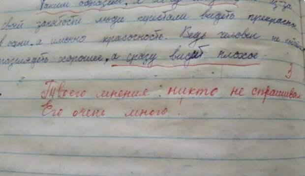 Учитель из Ейска признала свою неправоту с комментарием к сочинению школьника