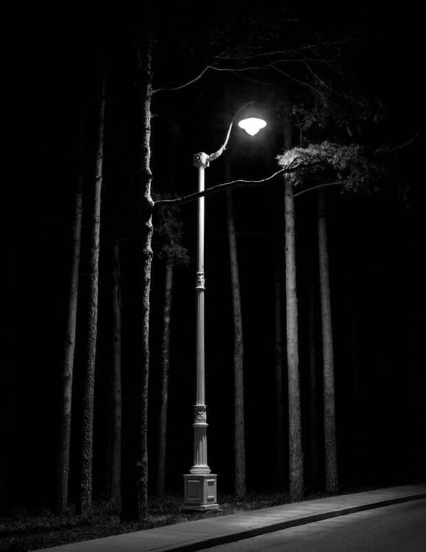 Фото дня: ночь, улица, фотограф и фонарь в Останкине