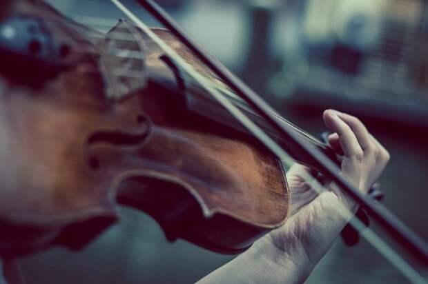 Музыкант рассказал о восприятии человеком сочетаний нот