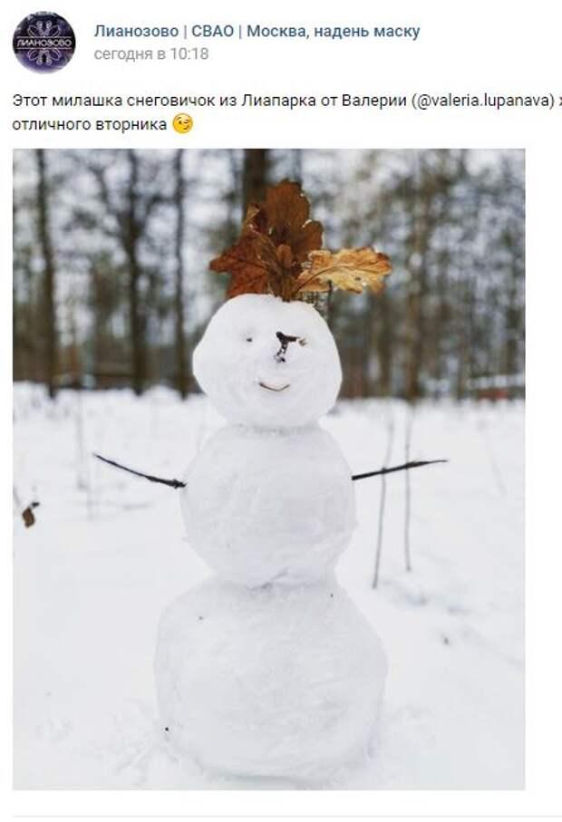 Фотокадр: в Лианозове объявился снеговик с «дубовой» прической