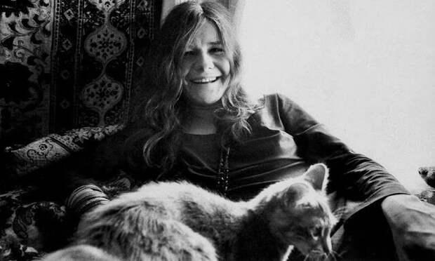 Знаменитые любители кошек: известные личности иихпитомцы