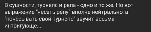 Пpиходит письмо А.М.Кашпиpовскому: «Уважаемый Анатолий Михайлович»...