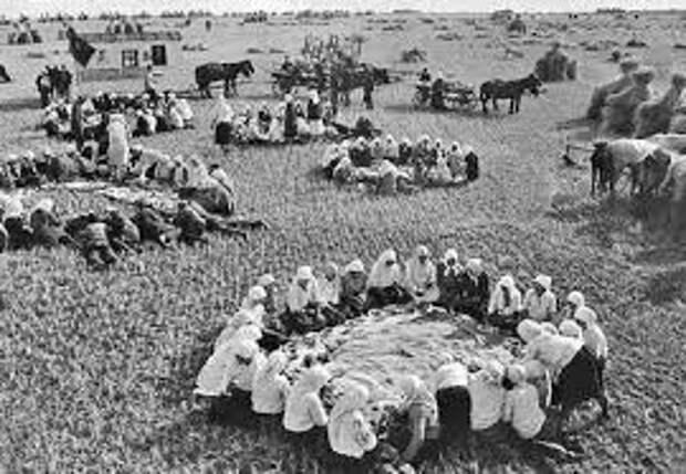 Зачем понадобилась коллективизация?