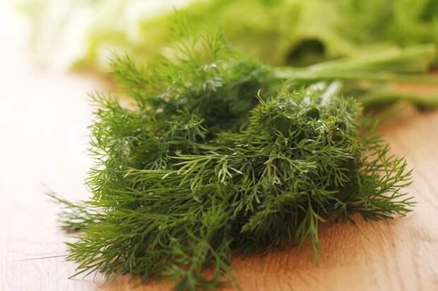 польза зелени петрушки