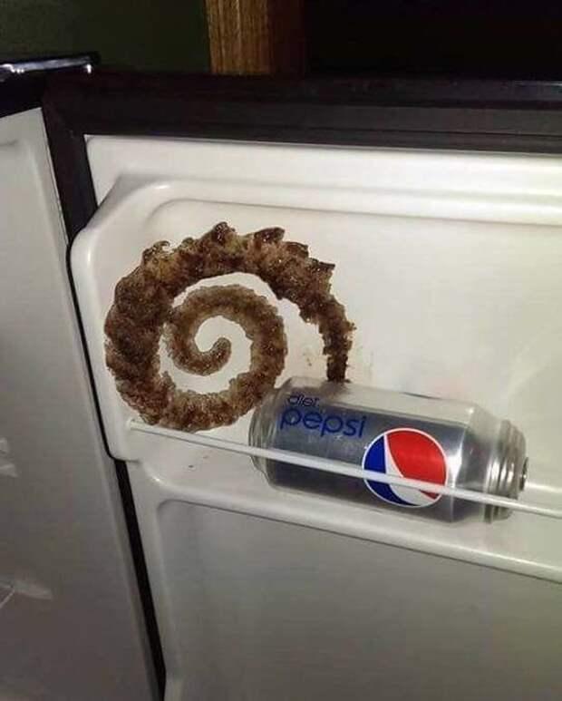 2. Просто оставил банку газировки в холодильнике, так вышло накосячили, оно само, ошибка, смешно, фото, юмор, я не специально, я случайно