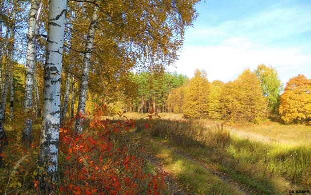 Красоты России (#578)