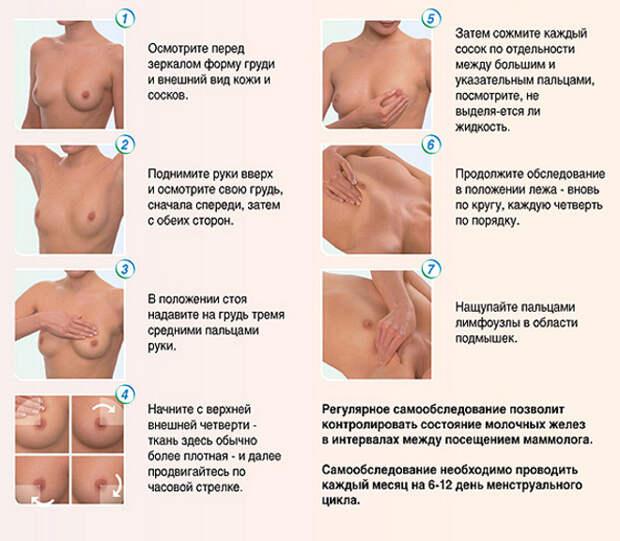 Мастопатия. Фиброзно-кистозная, диффузная мастопатия. Фитопрепараты при заболеваниях молочной железы