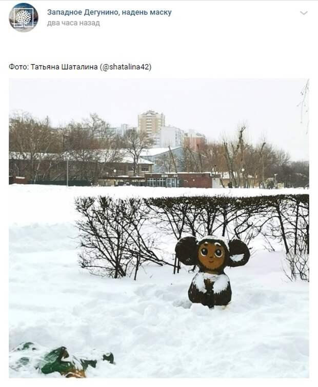Фото дня: Чебурашку и Гену замело на Ангарских прудах