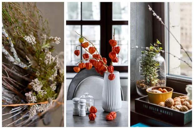 Какие растения не стоит держать в доме