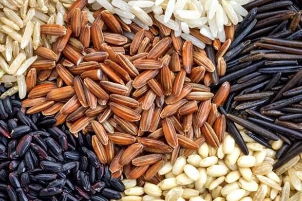Белый, бурый, золотистый, черный: какой рис самый полезный