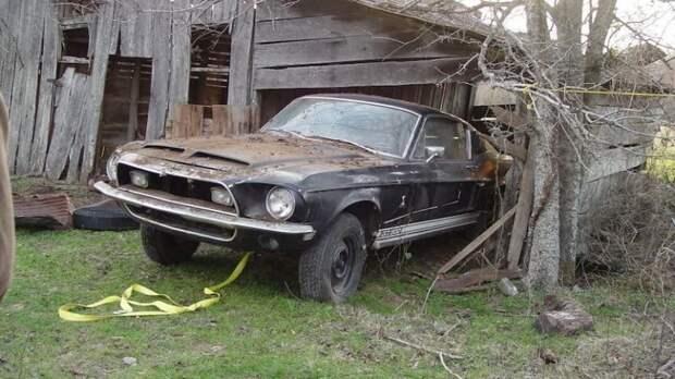 Чёрный ворон из Техаса: единственный в своём роде Shelby GT500 barn find, ford, ford mustang, авто, автомобили, находка, олдтаймер, ретро авто