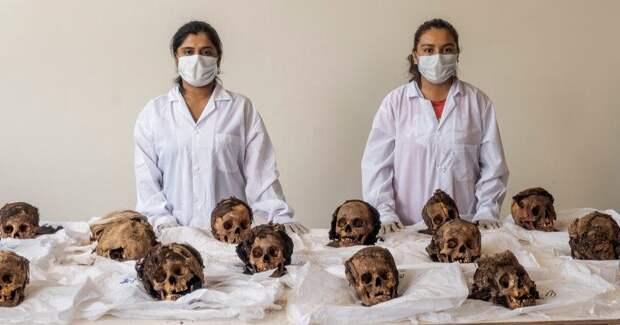 Ученые раскрыли массовое убийство детей на севере Перу, произошедшее в XVвеке