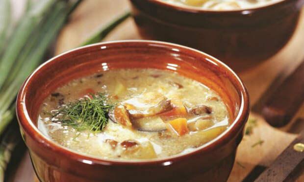 Грибной суп с баклажанами: сытное блюдо без грамма мяса