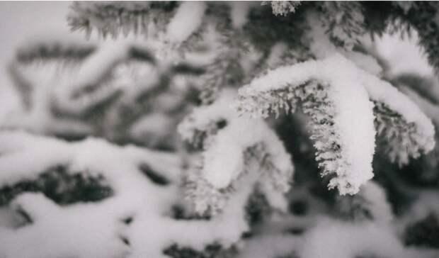 ВНижнем Тагиле 30-градусные морозы продержатся доконца недели