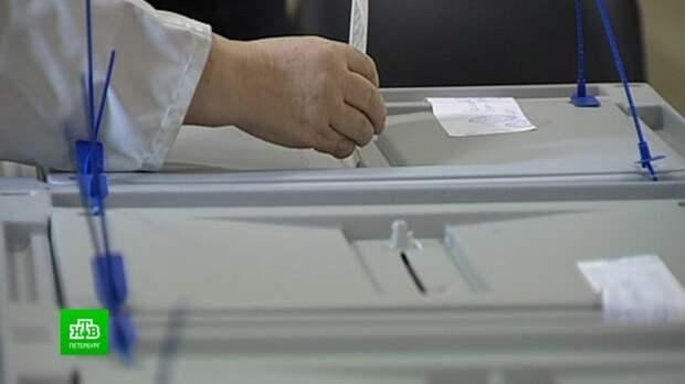 Участники выборов в ЗакС Ленобласти соберут подписи через «Госуслуги»