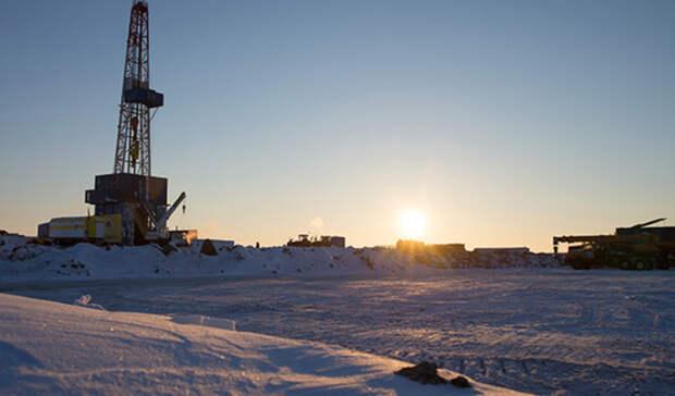 ВГДвнесен законопроект оботмене экологической экспертизы для поисковых скважин вАрктике