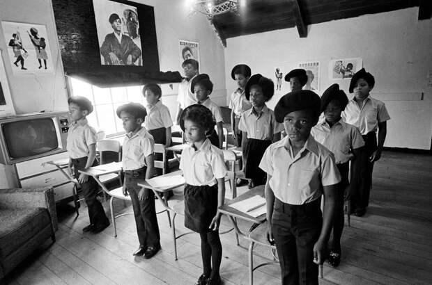 Социальные конфронтации в США 1960-х - 1970-х годов: Леворадикальная Партия черных пантер   (23)
