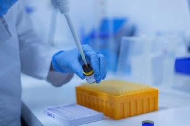 В российской сборной не выявили случаев заражения коронавирусом с начала ОИ