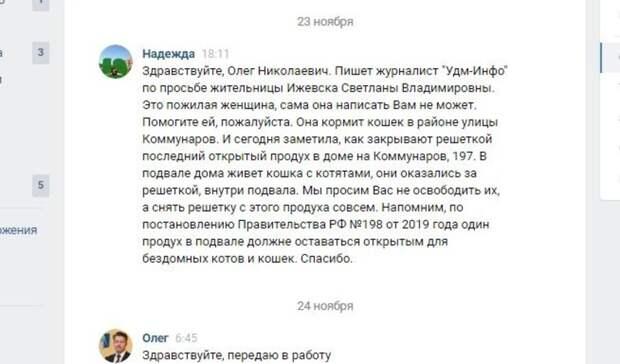 В доме по улице Коммунаров, 197 в Ижевске замуровывают кошек