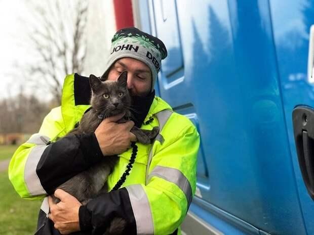 Обняв найденного кота, мужчина заплакал, как ребенок. Он уже и не верил, что когда-нибудь вновь увидит питомца