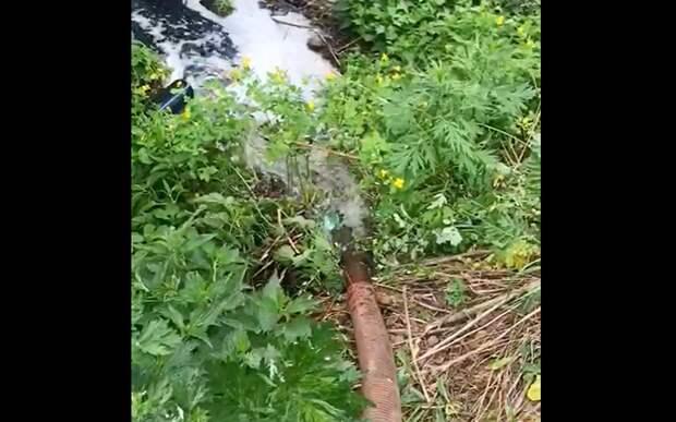 В Заборье засняли на видео ассенизаторскую машину, сливающую отходы в реку
