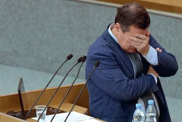Сегодняшняя Госдума России – это феерическая показуха и артель «напрасный труд»