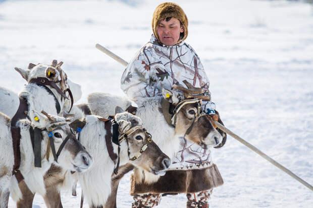 Ханты-Мансийск: что смотреть в краю мамонтов
