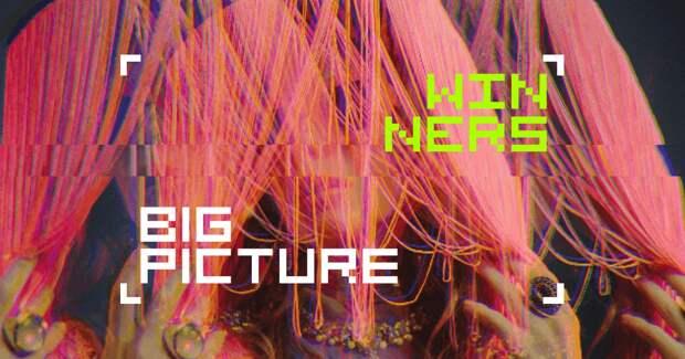 Объявлены победители первой ежегодной премии Big Picture Awards