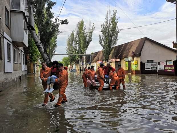 Ялтинский крокодиляриум полностью затопило: животных перевезли в Алушту