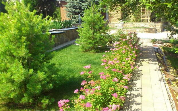 Ландшафтное озеленение приусадебного участка - идеи и советы