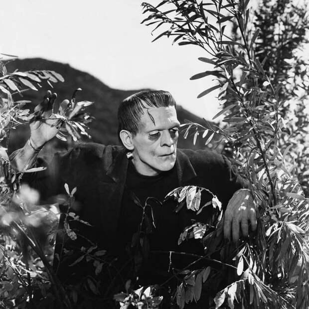 Борис Карлофф вфильме «Франкенштейн». Режиссер Джеймс Уэйл, 1931год. Источник: imbd.com