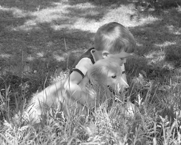 Были у мамы собачка и сынишка…