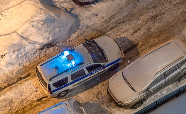 В Ленобласти завели дело против открывшего стрельбу из-за уборки снега