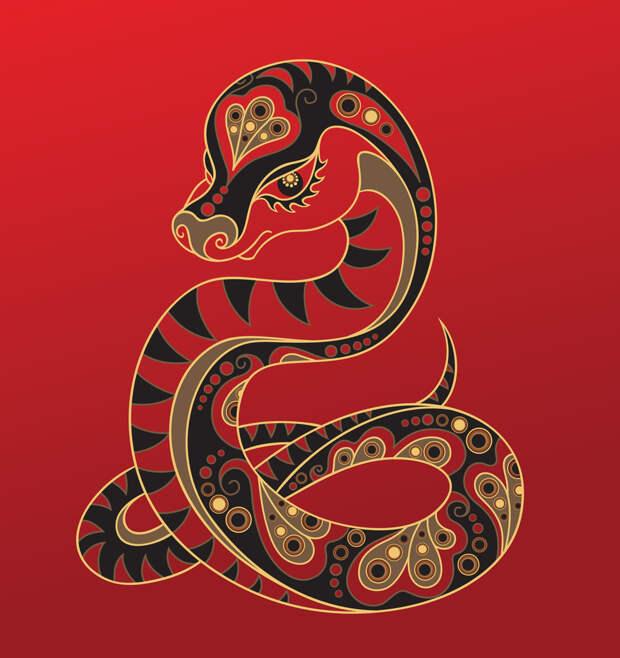Чего ждать от Белой Крысы? Китайский гороскоп 2020 по году рождения