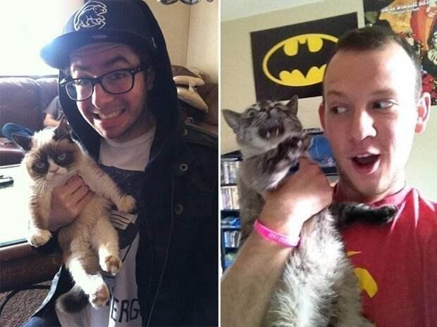 Помогите!!! 15 котов которые терпеть не могут целоваться обниматься, без кота и жизнь не та, коты и кошки, приколы, приколы с котами, смешные коты и кошки, юмор