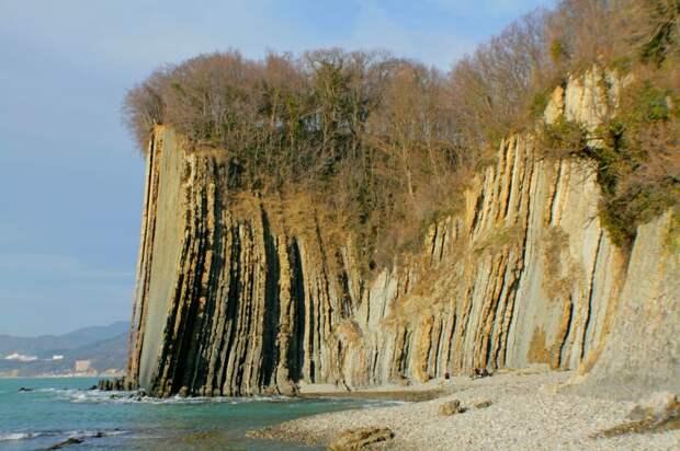 Скала - блок берегового флиша, высотой 48 метров.