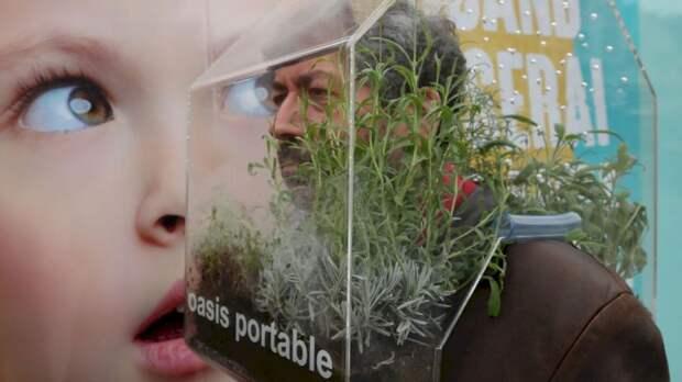 Бельгиец вместо маски носит на голове сад