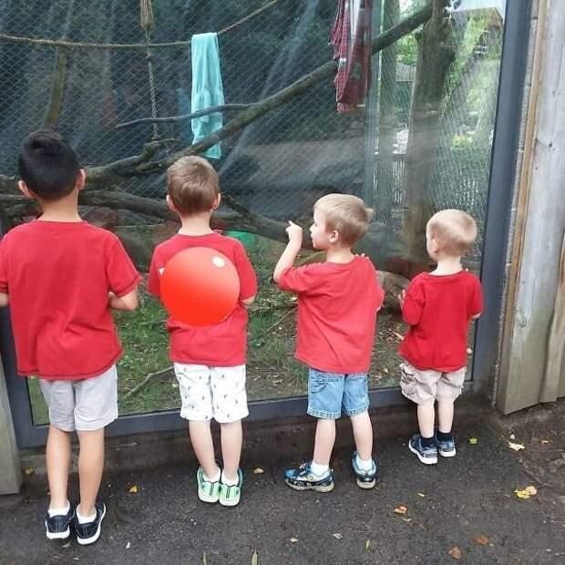 Идете в зоопарк? Придумайте яркую деталь, чтобы всегда легко находить свое чадо Лайфхак, дети, крутые идеи, родители, смешно