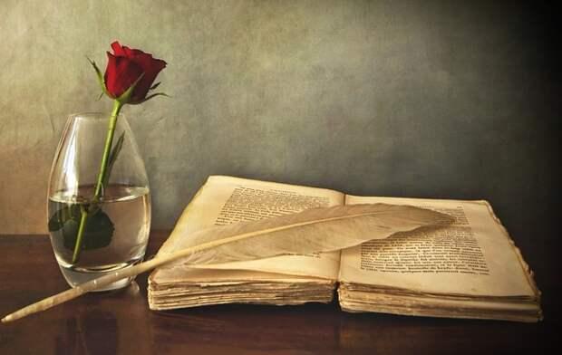 10 блестящих цитат из всеми любимых книг!